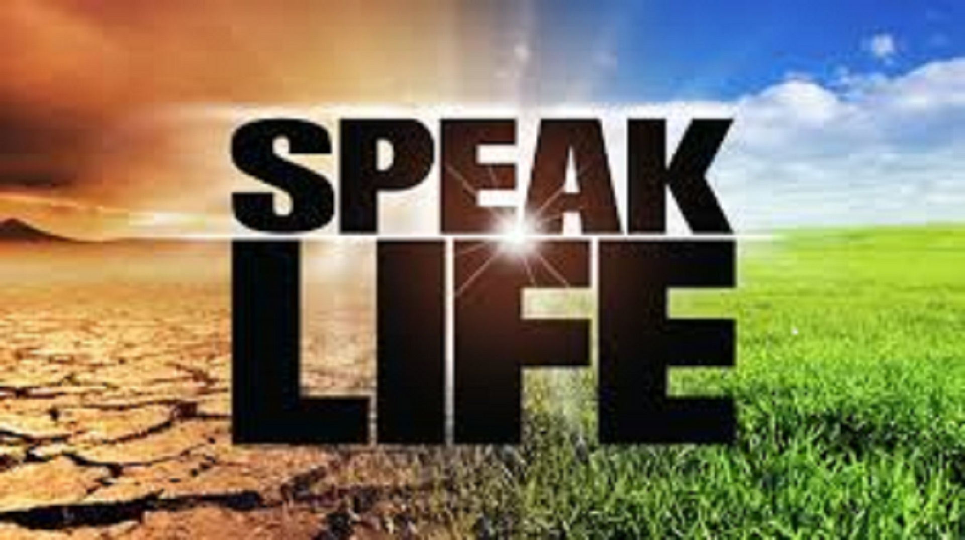 Speak Life Global Ministries
